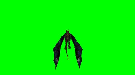 yaslanmak : dragon wyvern flying - green screen