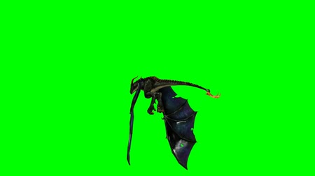 yaslanmak : flying dragon wyvern  - green screen