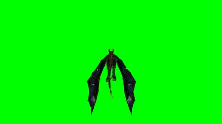 yaslanmak : flying dragon wyvern - green screen Stok Video