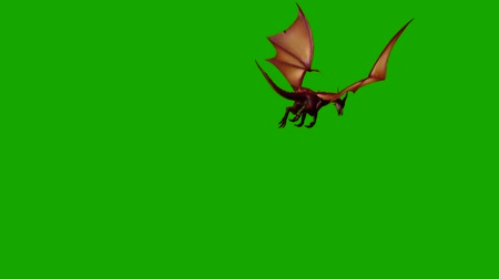 sürüngen : dragon fly attack breath fire - green screen