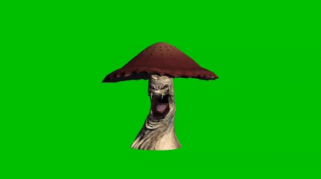 appear : angry brown mushroom looks around without shadow - green screen Stock Footage
