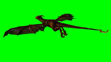 libélula : dragon wyvern in the glide - green screen