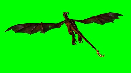 dragon wyvern in the glide - green screen