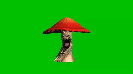 angry red mushroom looks around without shadow - green screen