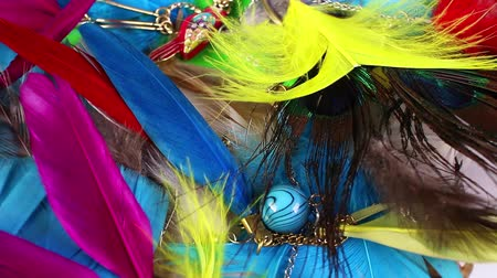 gif : Bird feather feathers jewels jewelry colorful jewelrys