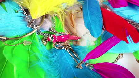 Bird feather feathers jewels jewelry colorful jewelrys