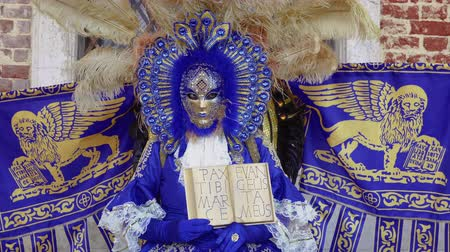 patron : Venice, Italy Carnival mask and costume pose with Venetian Coat of Arms. Masked person in traditional costume poses with Venice Lion symbol and words Pax tibi Marce, Enangelista meus.