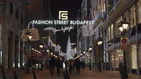 Budapest, Hungary Christmas Market & illuminated tree at Fashion Street. Night view of Advent Feast festive decorations at pedestrian area with prestigious shops expanding up to Deak Ferenc UTCA.