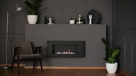 kov : Video of dark living room interior with fresh plants, decor, retro armchair and eco fireplace Dostupné videozáznamy