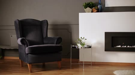 Video of dark living room interior with molding on wall, eco fireplace, velvet armchair, fresh plants and wood in metal frame. slide Stok Video
