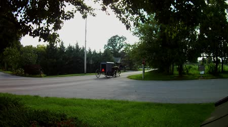 Amish Transportation Type Horse and Buggy