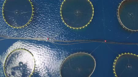 fly fish : Aerial view of fish farm near the island of Dugi otok