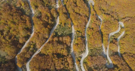 birdseye : autumn mountain road view from above