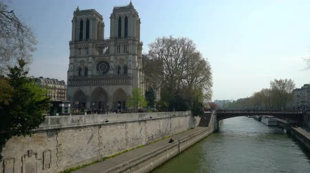 デイム : Notre Dame Cathedral surrounded by flowering trees 動画素材