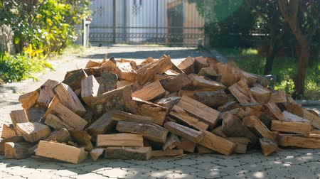 de faia : firewood from a large pile disappear one by one