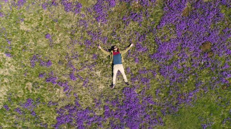 выражающий : bearded man lies on the field in violets top-down view Стоковые видеозаписи