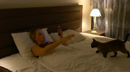 kotki : young woman lies in bed in the company of a cat and uses a smartphone Wideo