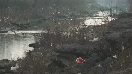 reciclado : torn plastic bags hang on trees and shrubs along the river