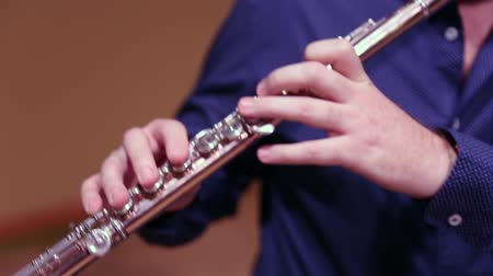flet : Musician playing flute on stage