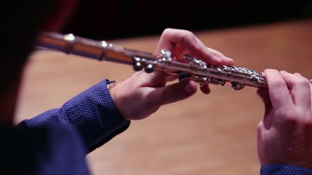 флейты : Musician playing flute on stage