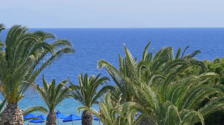 krete : Beautiful tropical mediterian clear blue water palms slow motion wind
