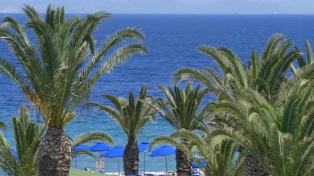 palmas das mãos : Beautiful Mediterranean coastline with windy palm trees and clear blue water Europe Vídeos