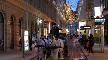 austríaco : Christmas Horse Carriege decorations Shoppings Streets decorated with chandeliers in old town Vienna, Austria, Europe December 2018 Vídeos