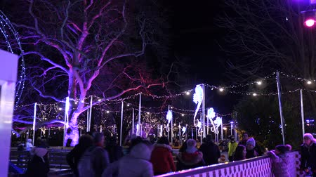 austrian : Christmas market ice skating rink near town hall at evening time in winter Christmas decorationsChristmas Market Rathausplatz Vienna Austria Europe December 2018