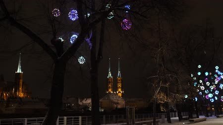 wrocław : Beautiful Snowfall. White Winter in Wroclaw, Poland. Cathedral of St. John. Street with Christmas lights