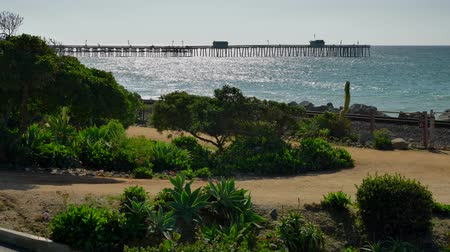 Scenic Beautiful view thru flowers green plants agave aloe vera San Clemente Pier in Linda Lane Park West Coast California sunny day railways road and waves long flat