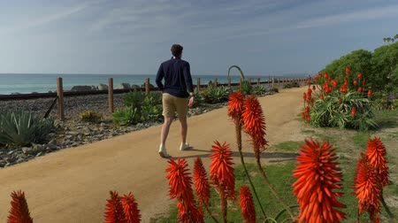 A handsome, young guy, a man in a navy blue shirt with and shorts is walking along in California coast San clemente Linda Lane park view tru red flowers Stock Footage
