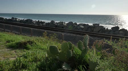 mozdony : Scenic Beautiful view thru green plants agave aloe vera San Clemente Pier in Linda Lane Park West Coast California sunny day railways road Stock mozgókép