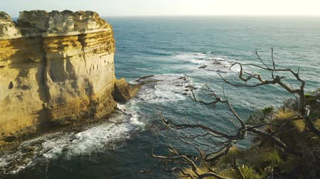 apostoles : Movimiento Dolly del mirador razorback al atardecer en Twelve apostles in Victoria, Australia Archivo de Video