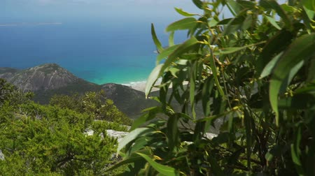 пьедестал : Paradisiac island in Australia, Wilsons prom in the summer, pedestal up view Стоковые видеозаписи