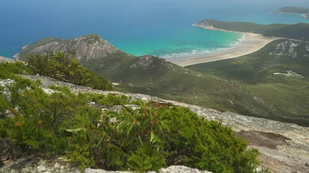 Dense jungle forest, mountains and blue turquoise water in Wilsons prom, Australia, dolly in Стоковые видеозаписи