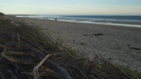 Inverloch surf beach in Australia, dolly in shot