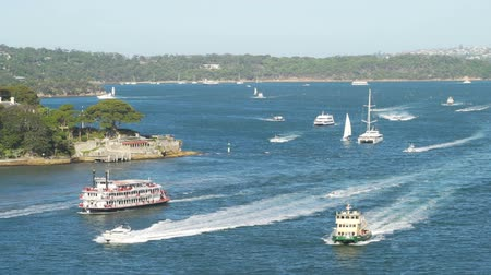veículo aquático : Boats getting in the Sydney harbour in the summer, Australia