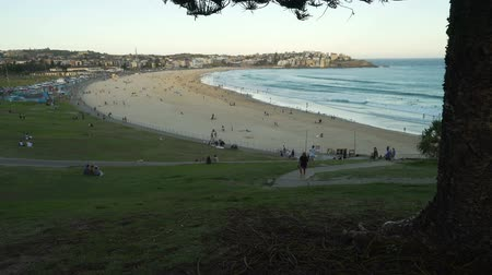 пьедестал : Bondi beach in Australia at sunset, close to Sydney, pedestal up Стоковые видеозаписи