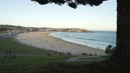 Bondi beach in Australia at sunset, close to Sydney