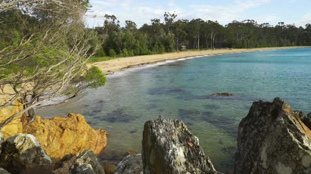 Eden beach in Victoria, Australia, in the summer