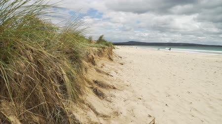 Pambula beach in New South Wales, Australia, in the summer