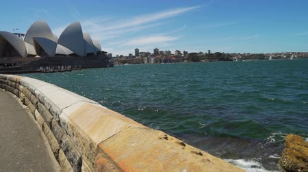 Sydney harbour and opera seen from the botanical garden, Pedestal up Stock Footage