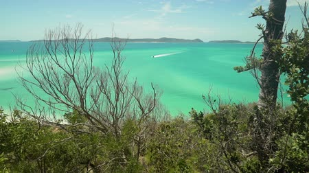 excesso de velocidade : Boat speeding to the whitsundays island in Australia