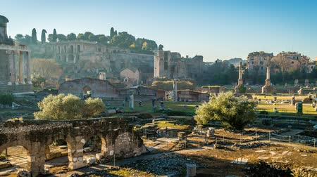 フォーラム : Antic forum in Rome on a bright sunny morning, zoom in