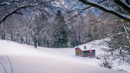 monte de neve : Wood cabin lost in the mountain in the winter with snow everywhere, zoom in Stock Footage
