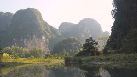 ninh : Navigate In The Wild On Coc River Near Caves, Ninh Binh, Vietnam Stock Footage