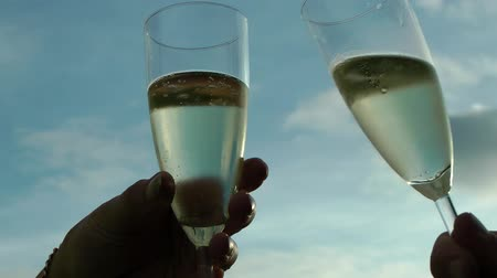 szampan : Toasting with a Glass of Champagne Wideo