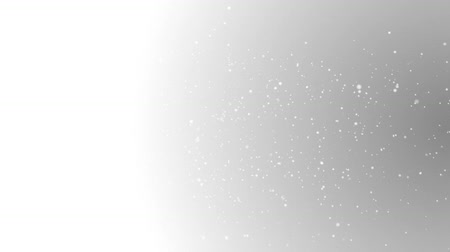 isolado no branco : Snow Background - Animated Falling snowflakes