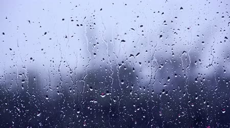 ulewa : Rain drops running down a window pane Wideo