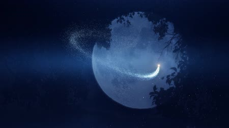 vila : dramatic magical moon light fairy dust animated background